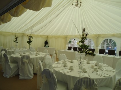 Pure White Chair Covers